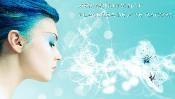 Aer conditionat  - Service - Incarcare freon  - in cartierul-zona Lipscani